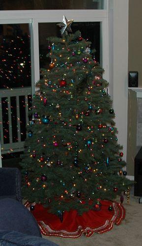 Christmas2008 034
